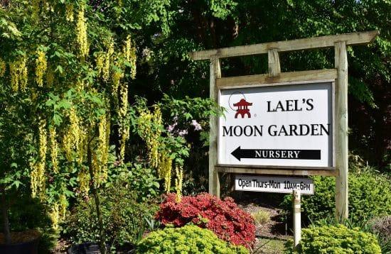 lael's moon garden